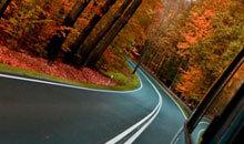 Straße in herbstlichem Wald » Wahr Energie